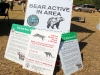 bear-active-in-area