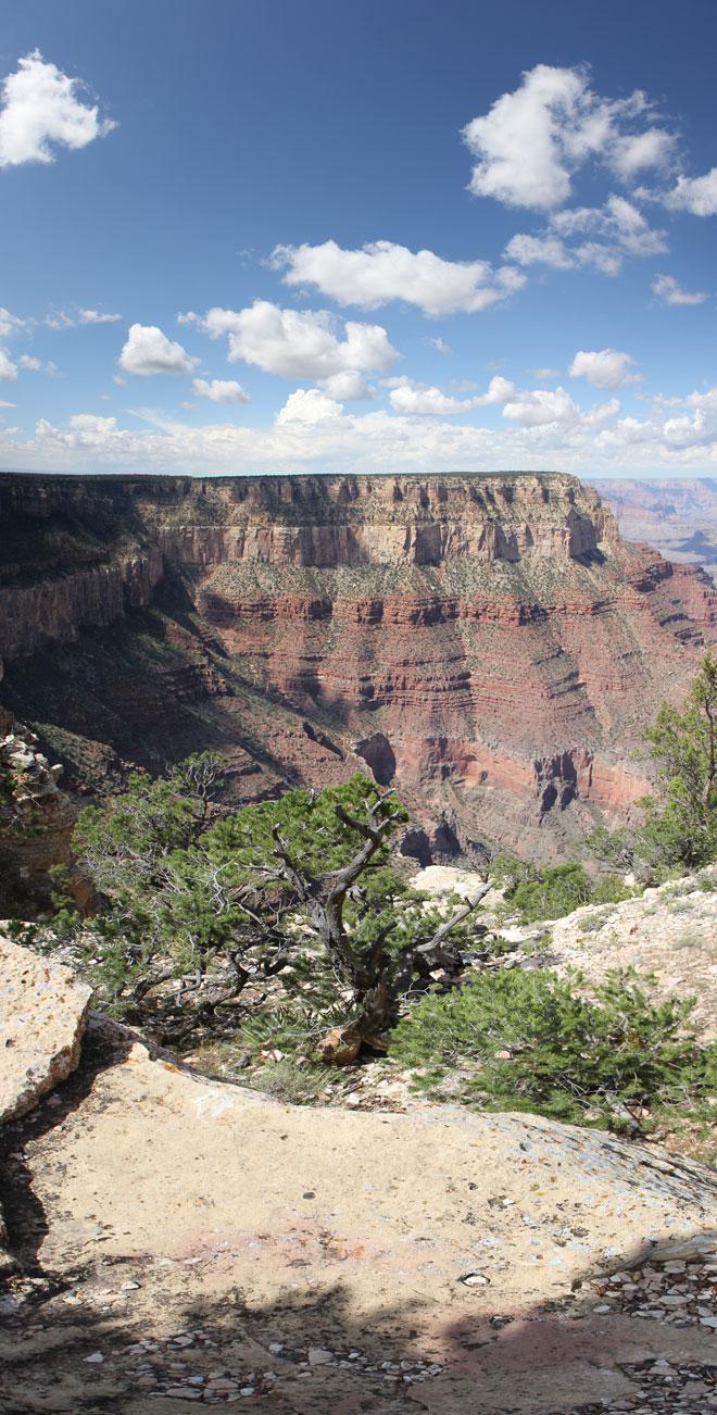 top-down-grand-canyon-660
